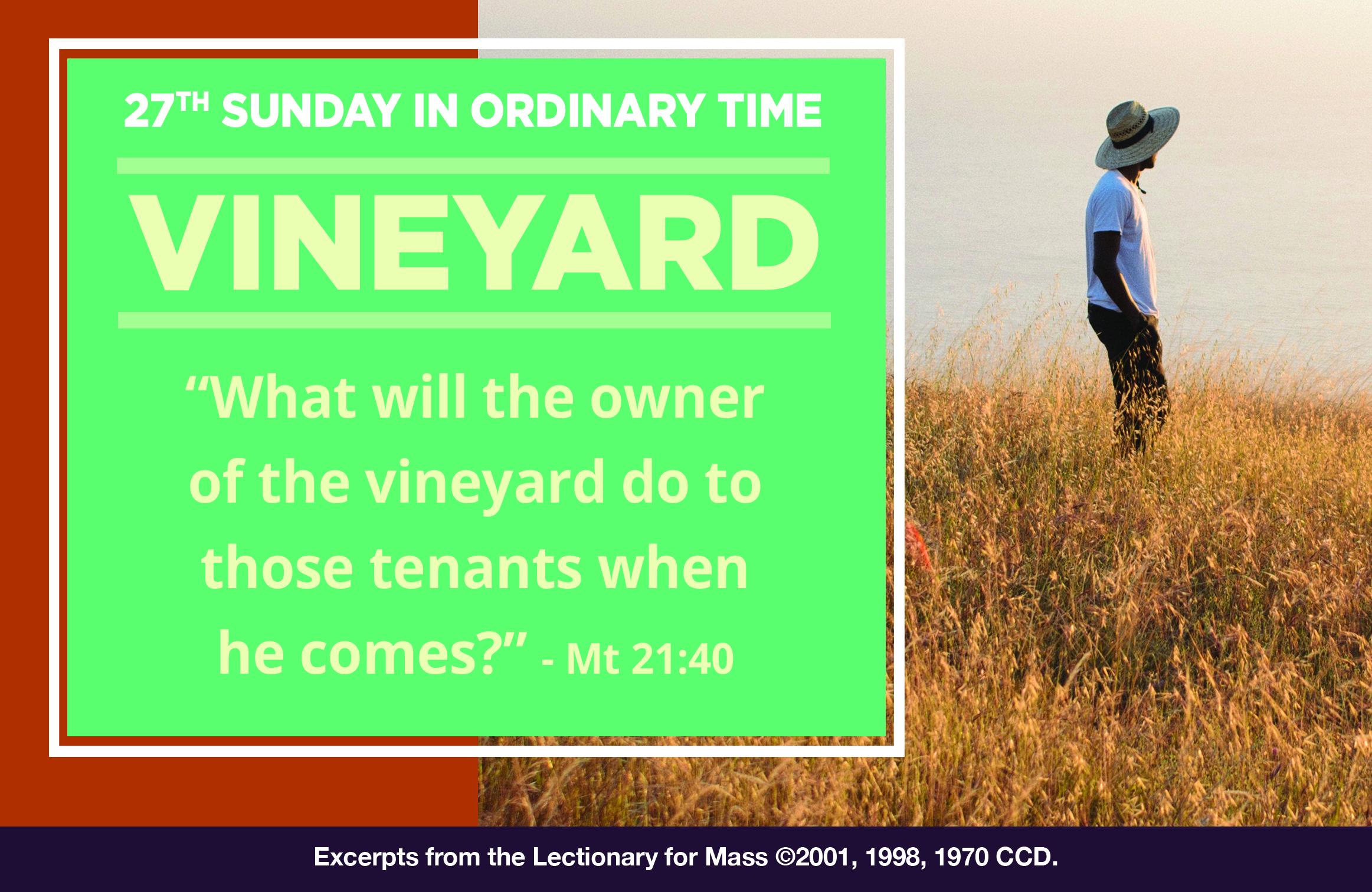Sunday Mass with Fr. Armando – Sunday, October 4, 2020 | Quad