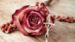 Rosary Service @ St. Jude Parish